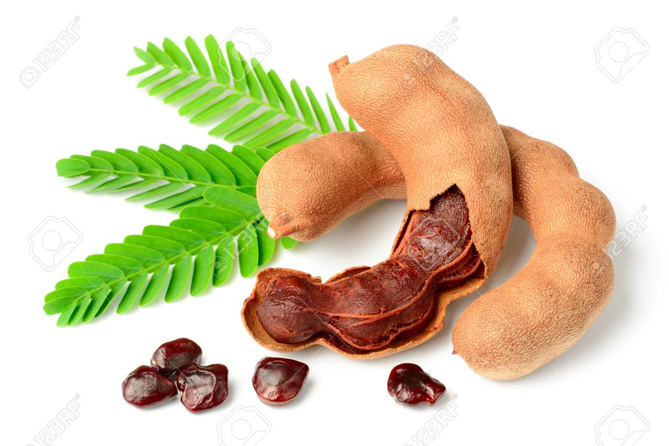 fresh tamarind fruits and leaves isolated on white background - 103040449