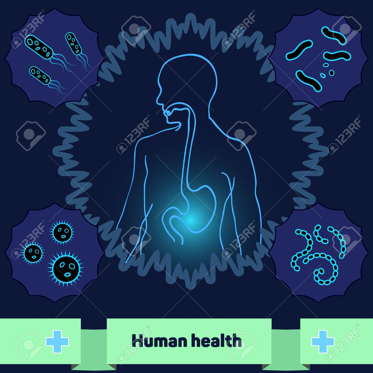 The human body without dangerous bacteria and microorganisms - 50435864