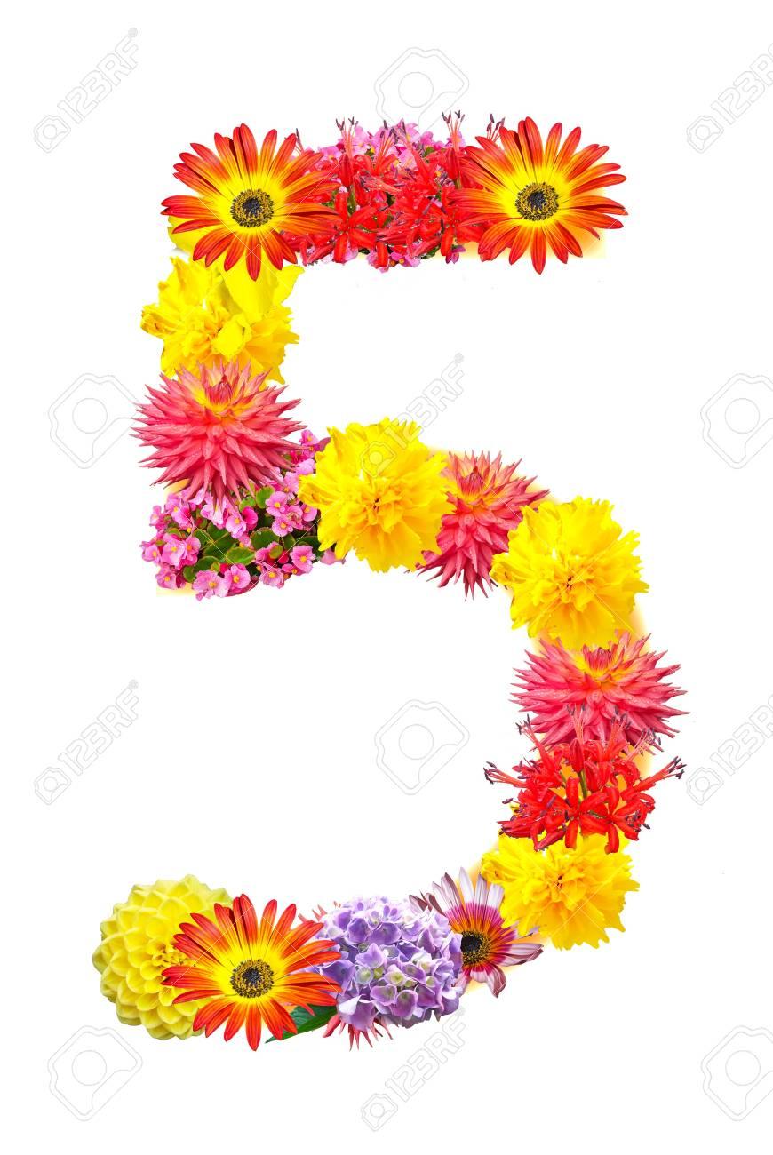 Flower letter Stock Photo - 13916428