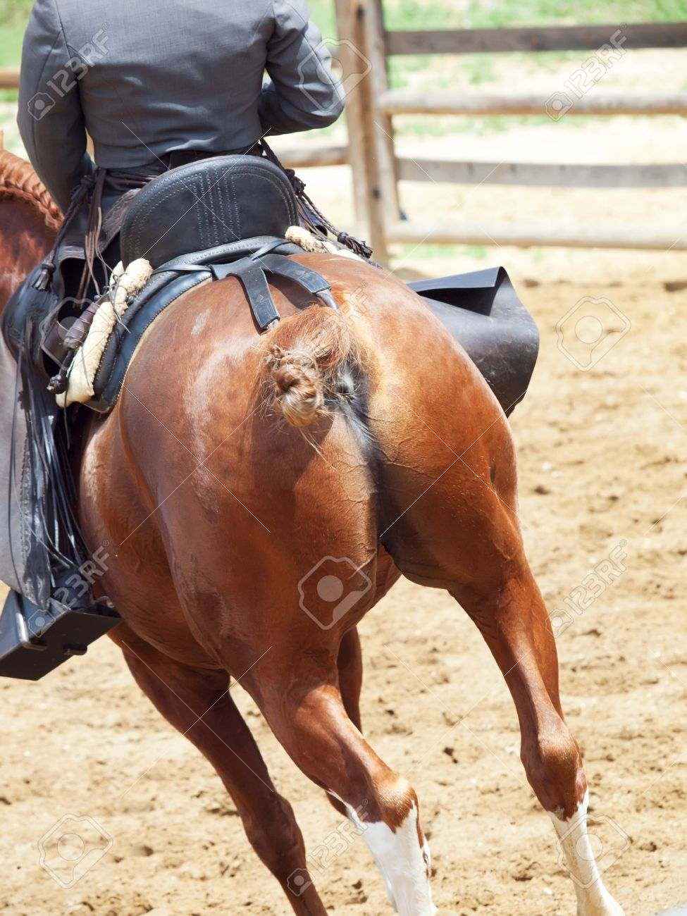 cowbow riding at horse looking behind sunny day Stock Photo - 13872031