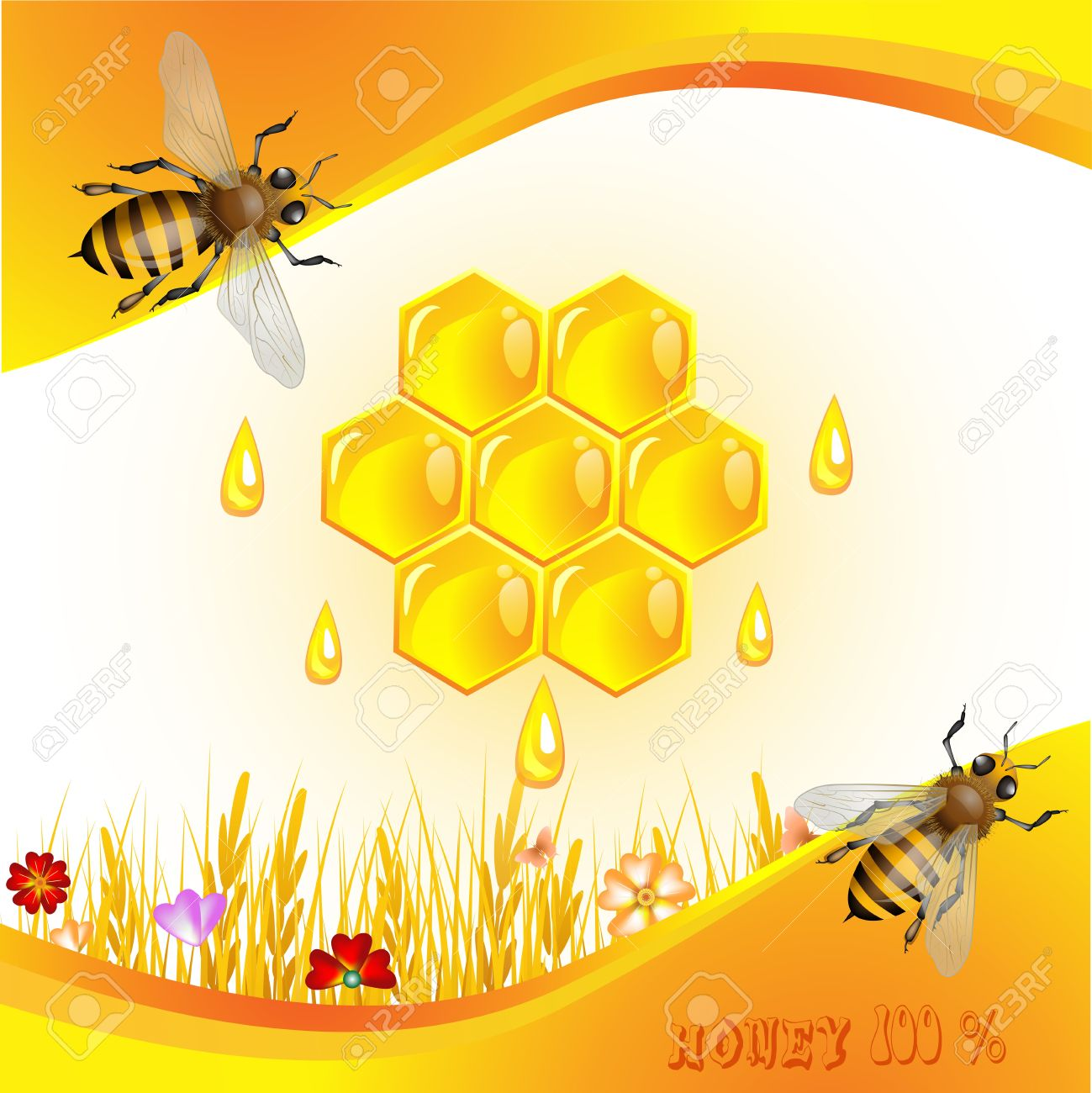 honeycomb images u0026 stock pictures royalty free honeycomb photos