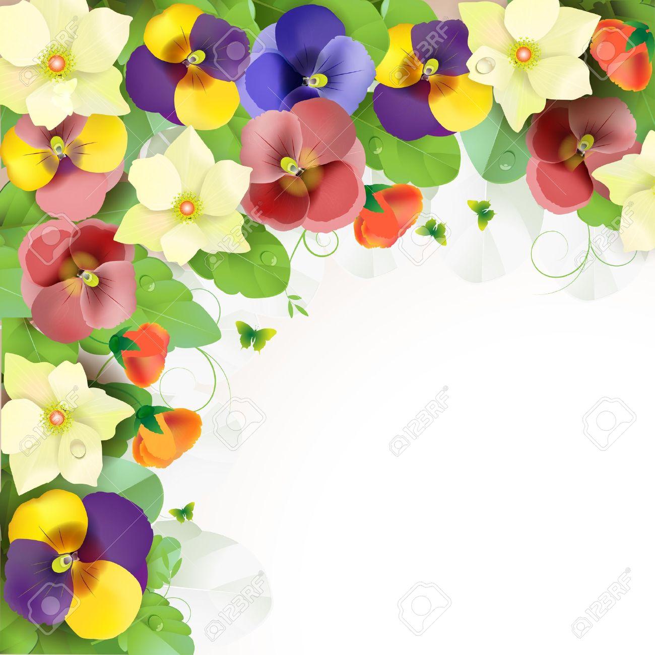 Viola Del Pensiero Floral