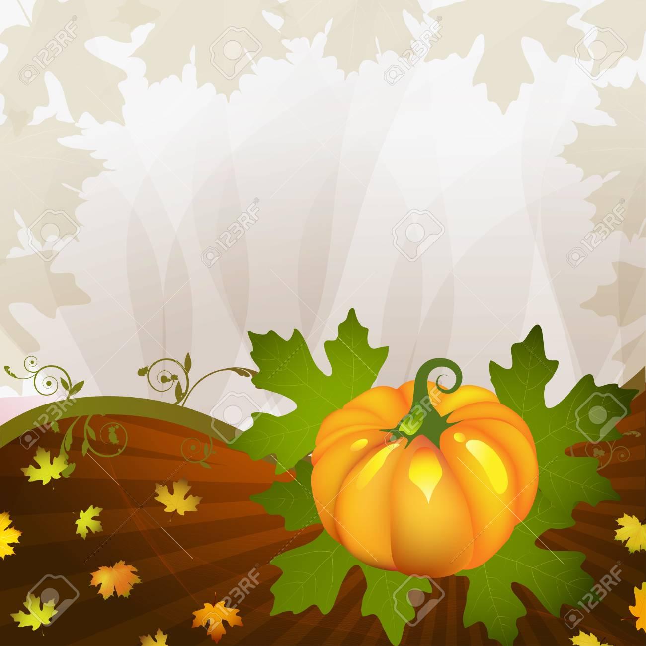 Orange pumpkin vegetable with leaves Stock Vector - 15322725