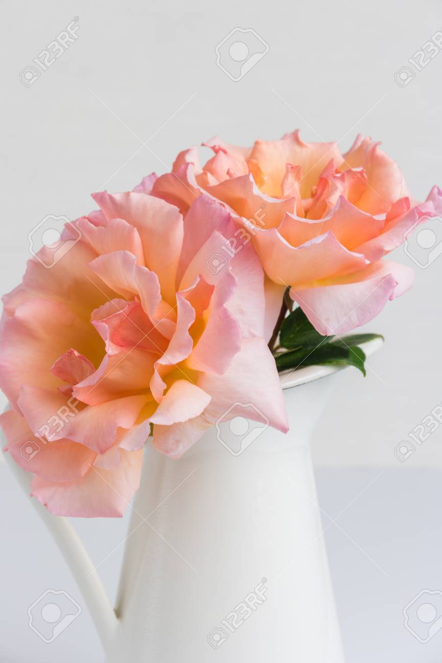 Fresh Bunch Of Pink Roses Flowers In The Jar Pastel Floral