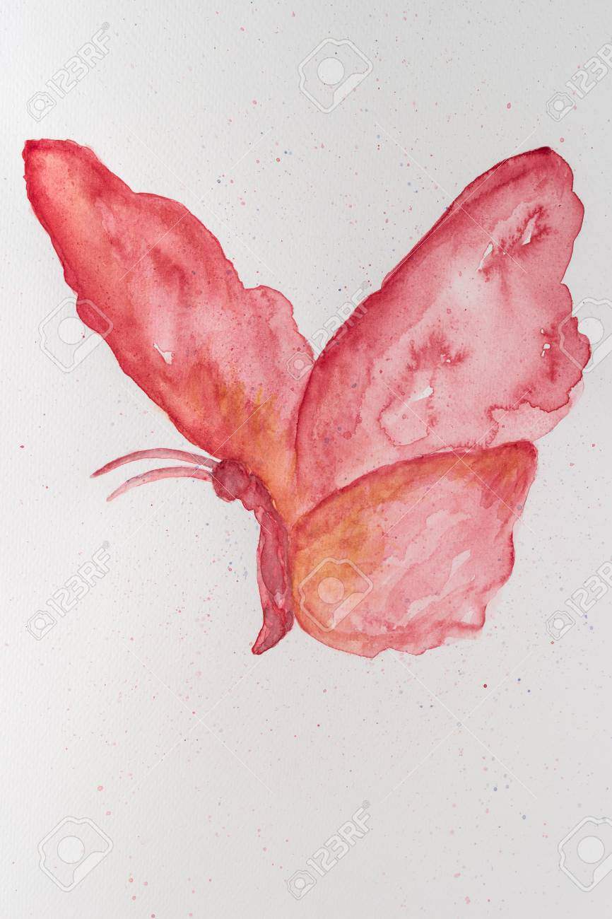 Abstract Watercolor Hand Drawn Butterfly. Hand Painted Watercolor ...