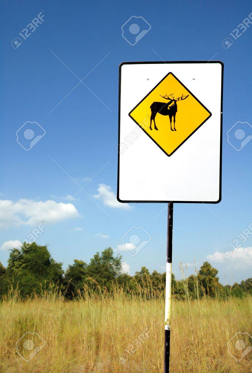 deer caution sign Stock Photo - 8239346