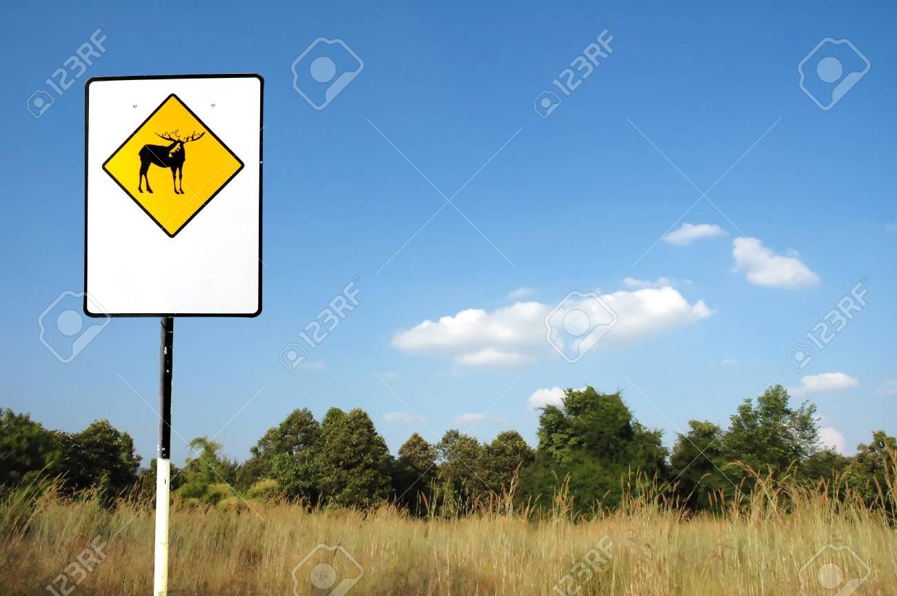 deer caution sign Stock Photo - 8239337