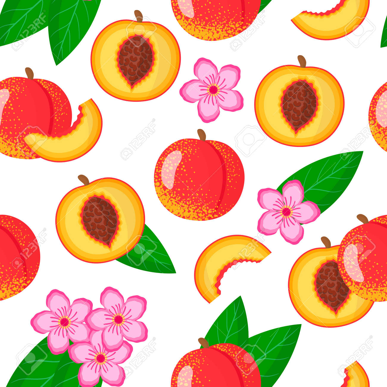 Vector cartoon seamless pattern with Prunus persica nucipersica or Nectarine exotic fruits, flowers and leafs on white background for web, print, cloth texture or wallpaper - 156023274