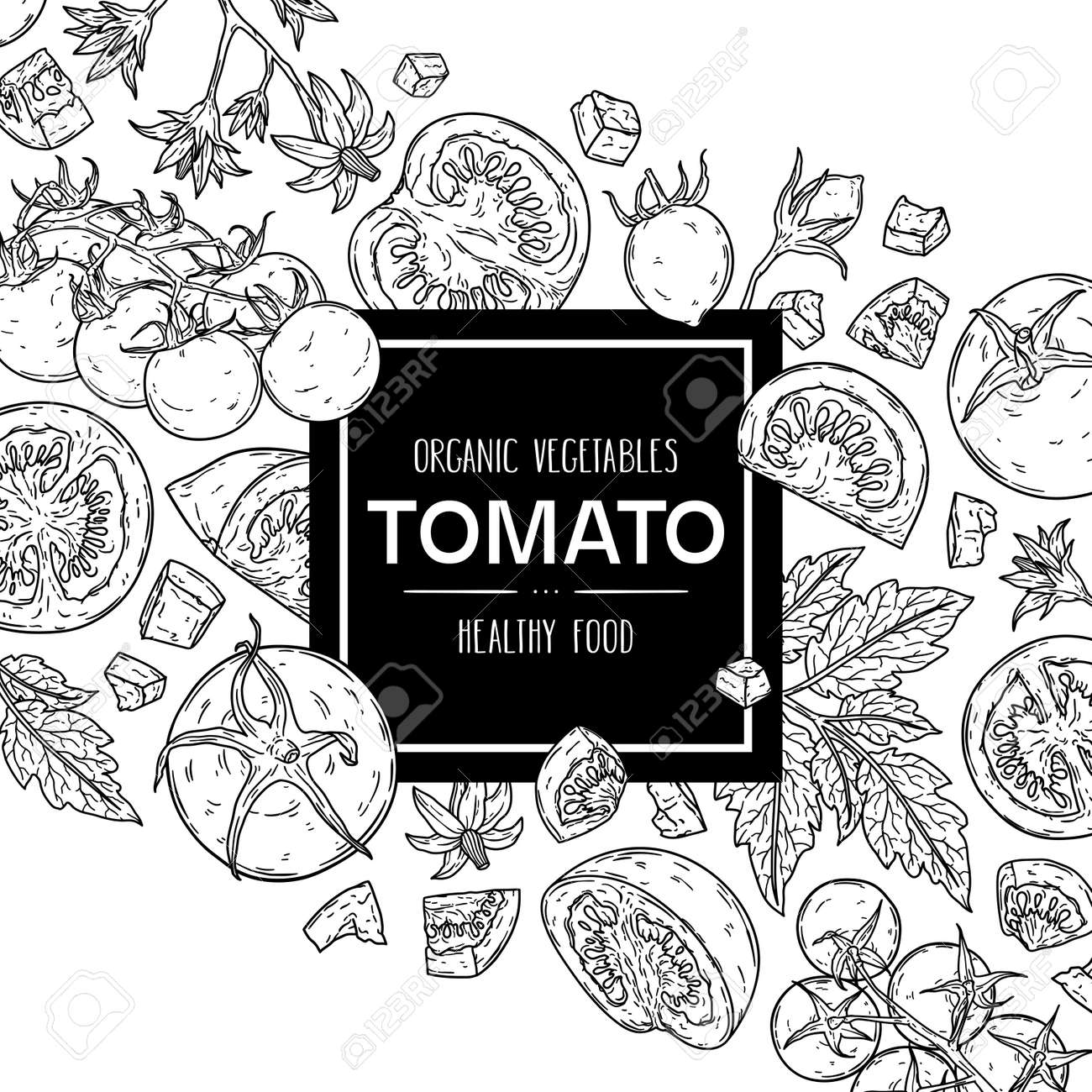 Vector hand drawn background with natural tomatoes, slices, half, flower, branch with leaves and cherry tomatoes. Outline ink style illustration. - 168597428
