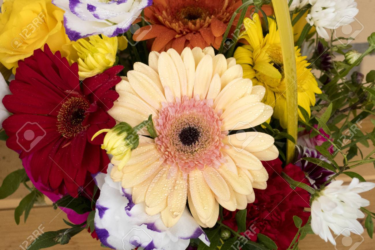 Beautiful Multicolored Bouquet Of Flowers From Different Types