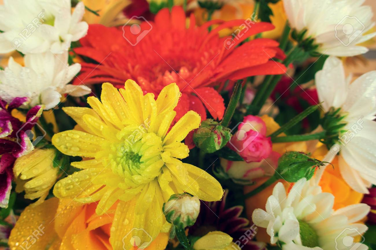 Amazing beautiful bouquet of different flowers stock photo picture amazing beautiful bouquet of different flowers stock photo 92412695 izmirmasajfo