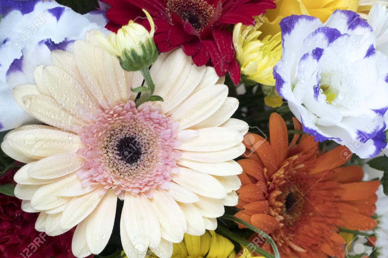 Amazing beautiful bouquet of flowers from a variety of colors stock amazing beautiful bouquet of flowers from a variety of colors stock photo 93017697 izmirmasajfo