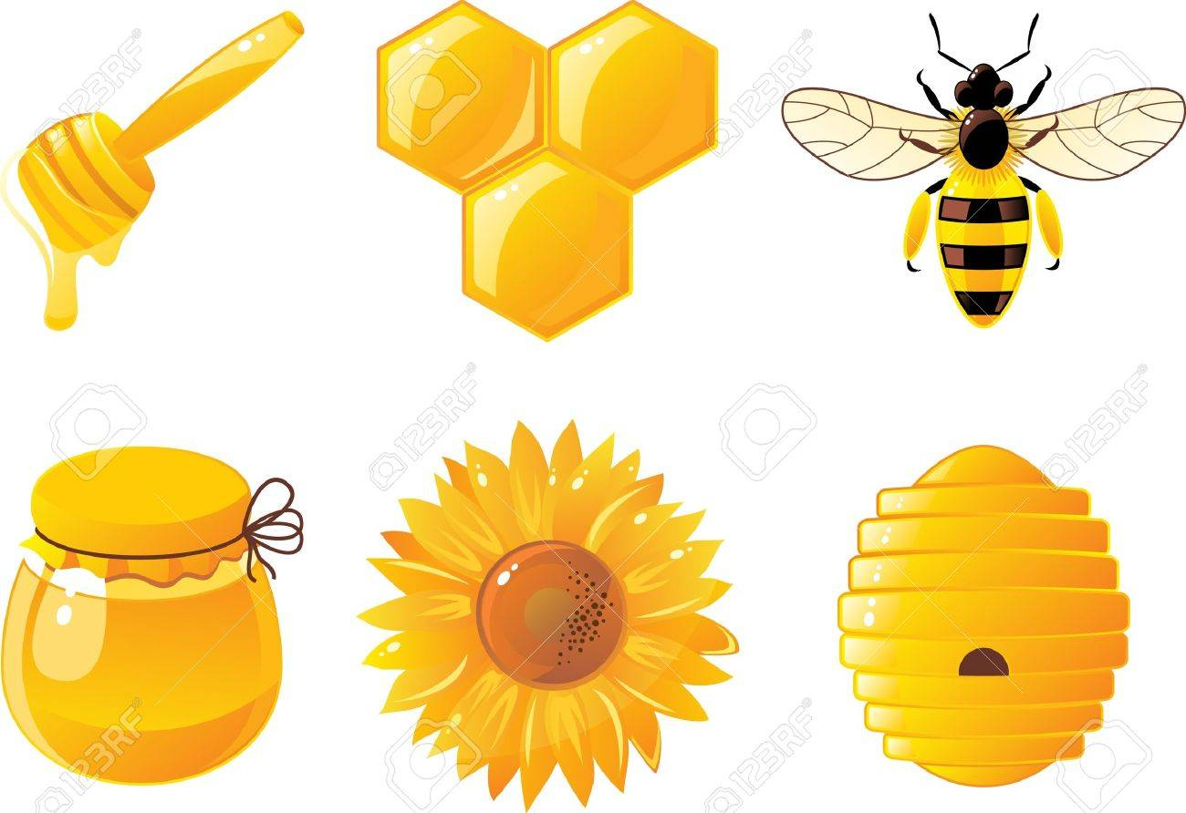 6 bee and honey icons royalty free cliparts vectors and stock