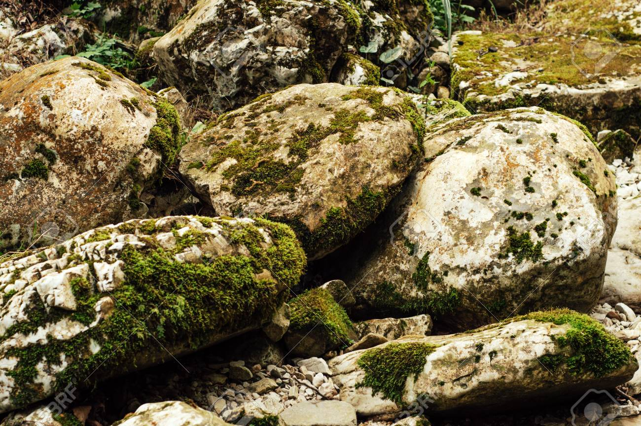 Large stones covered with moss. Beautiful background - 107192746