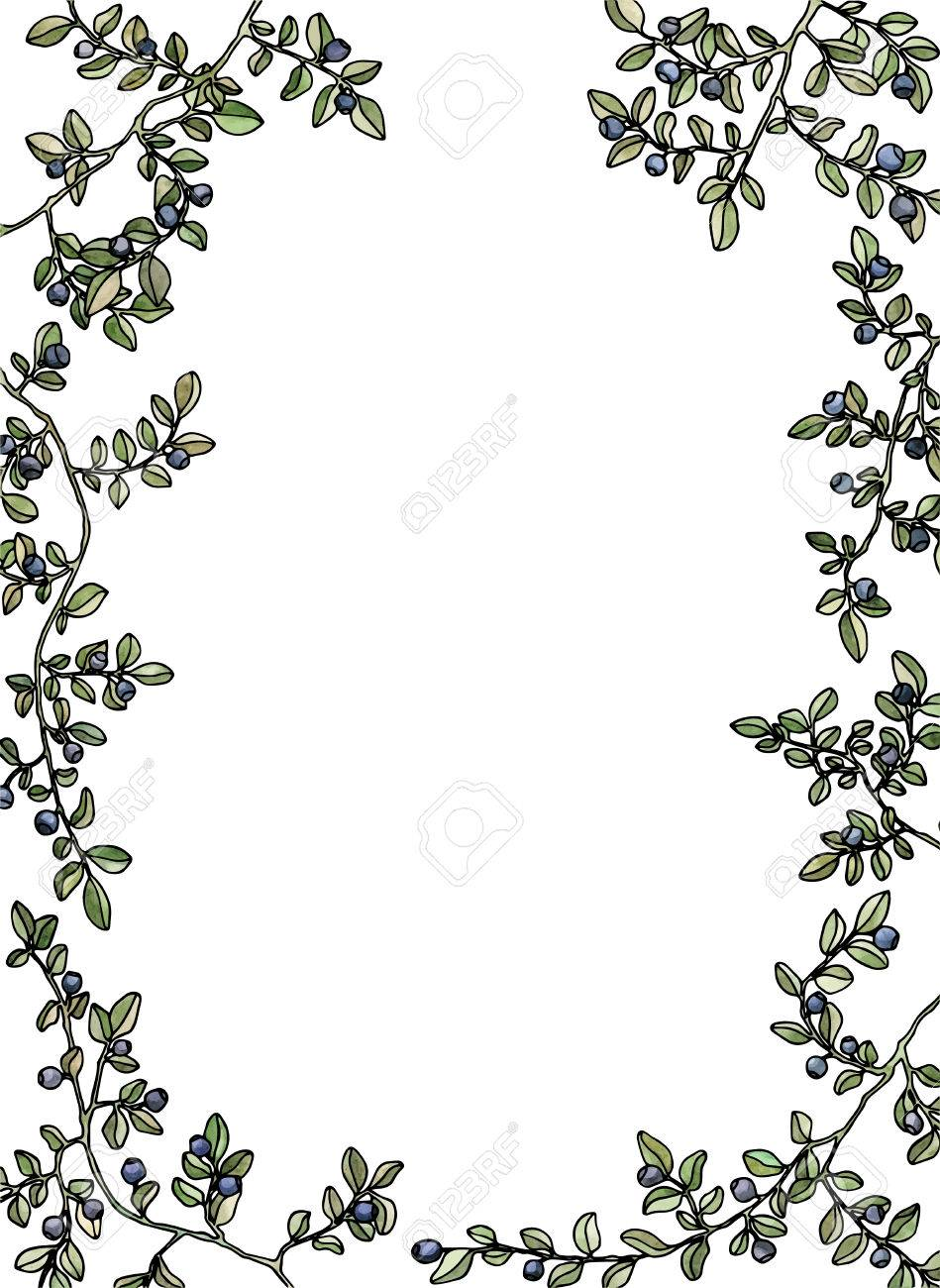 blueberries frame background pen drawing frame with flowers