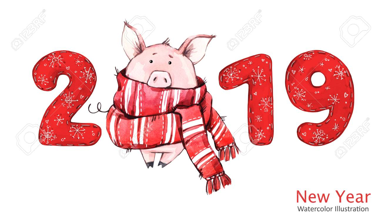 2019 happy new year banner cute pig in winter scarf with numbers greeting watercolor