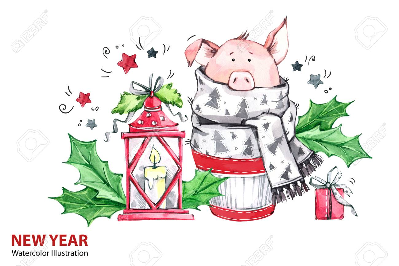 2019 Happy New Year Illustration. Christmas. Cute Pig In Winter ...