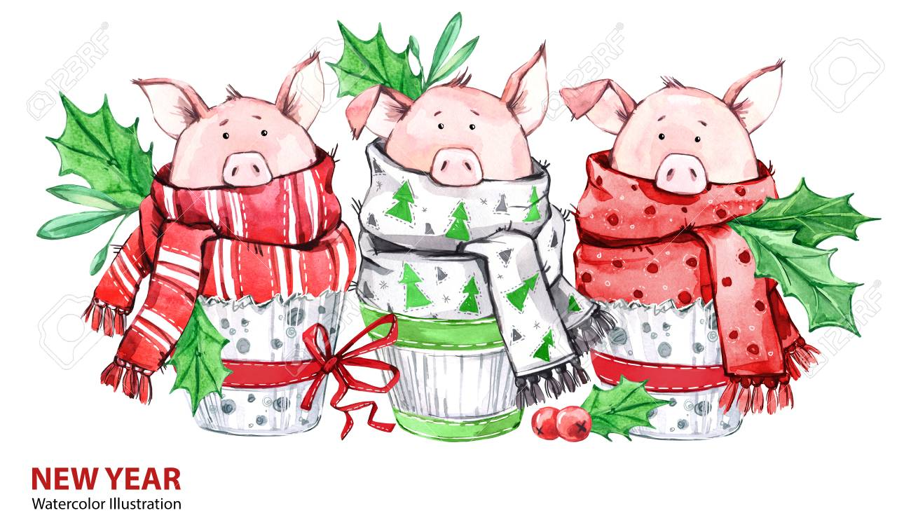 2019 happy new year illustration christmas border 3 cute pigs in winter scarves