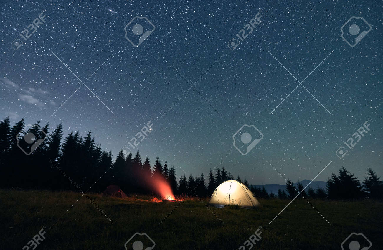 Wide angle view on beautiful landscape in the mountains. Illuminated tourist tent and campfire under starry sky. Mountains range behind spruces. Concept of night camping and astrophotography - 173107362