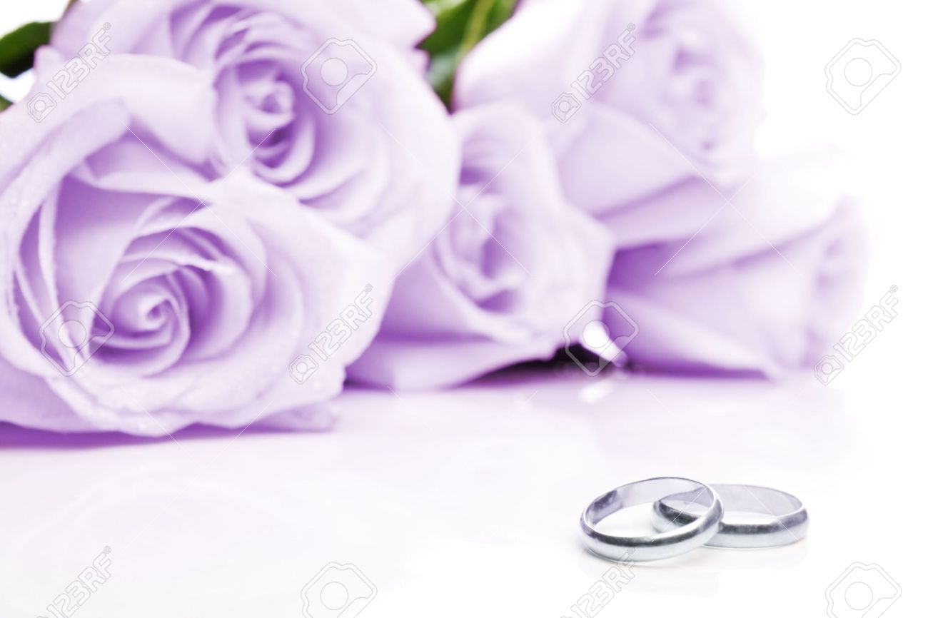 Wedding rings with lavender background free