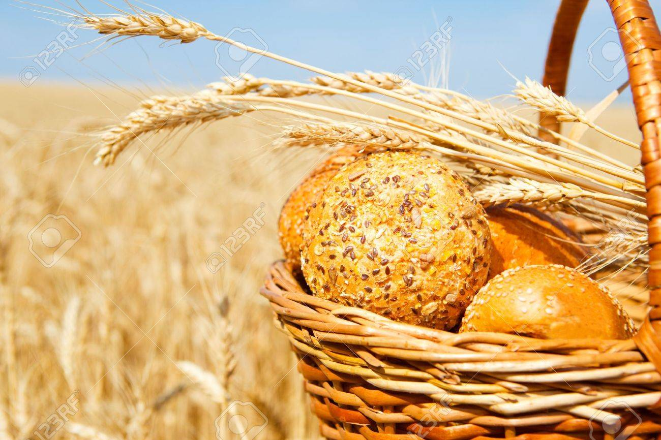 Wicker basket with bread and buns in a wheat field Stock Photo - 5210973