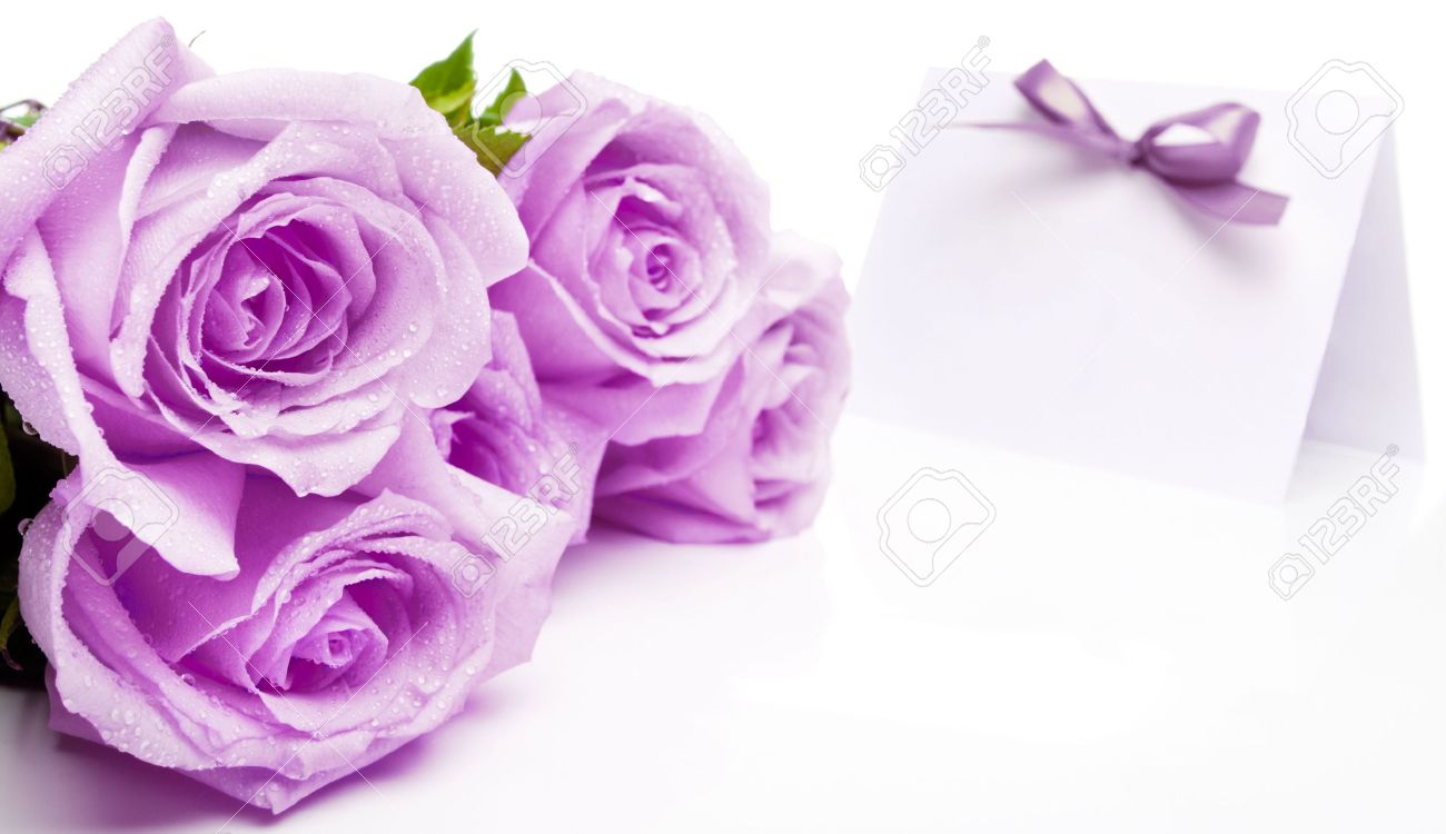 Purple Roses And Blank Invitation Card With A Bow