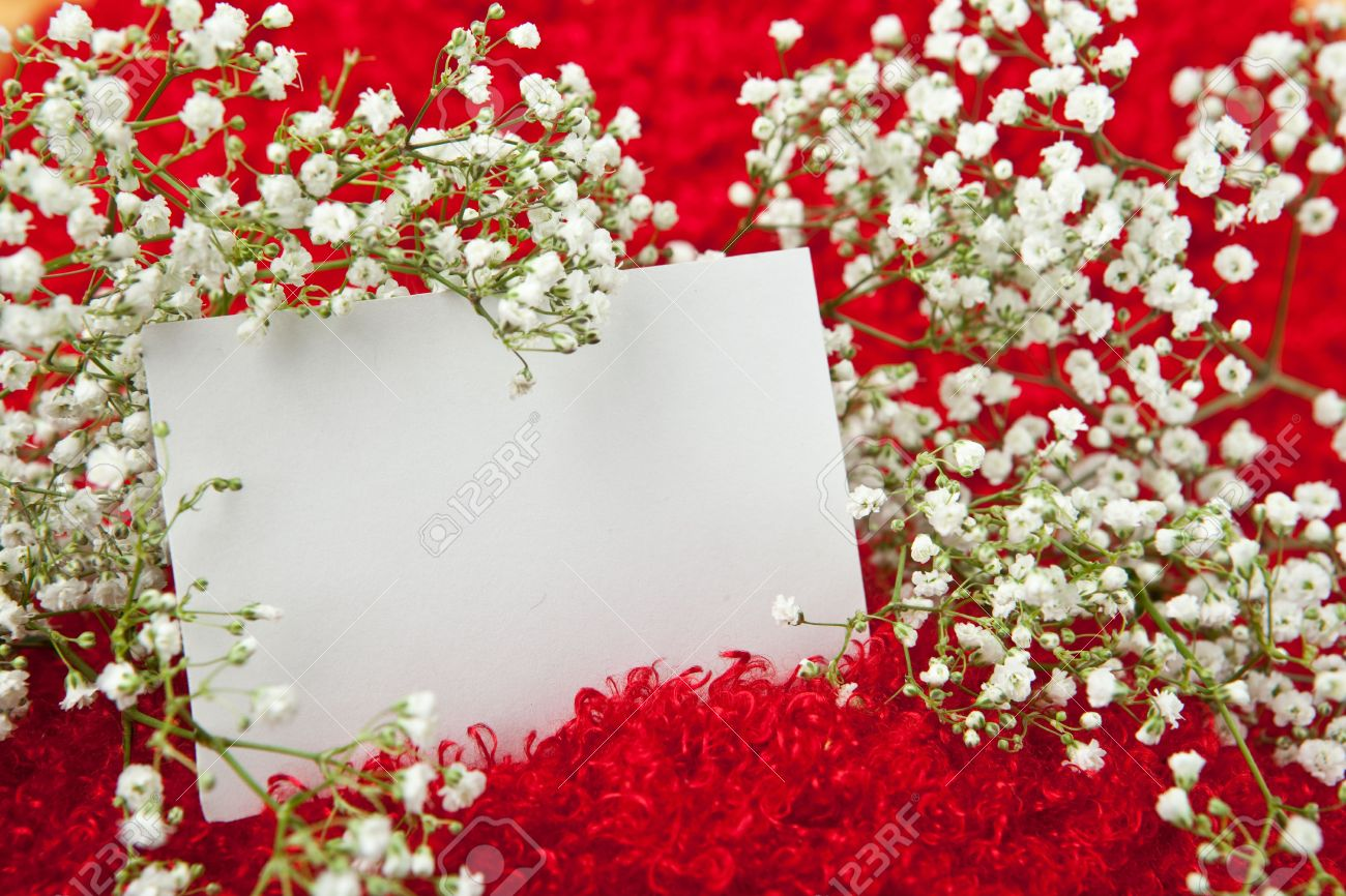Blank Invitation Card In White Flowers On Shaggy Red Fabric – Blank Invitation Card