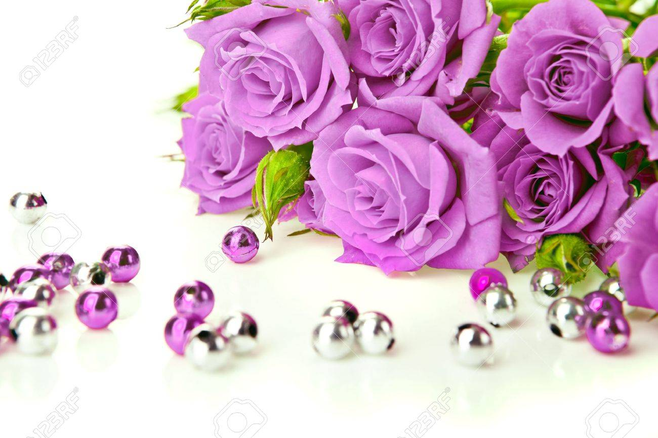 Purple Roses Bouquet And Beads On White Background Stock Photo