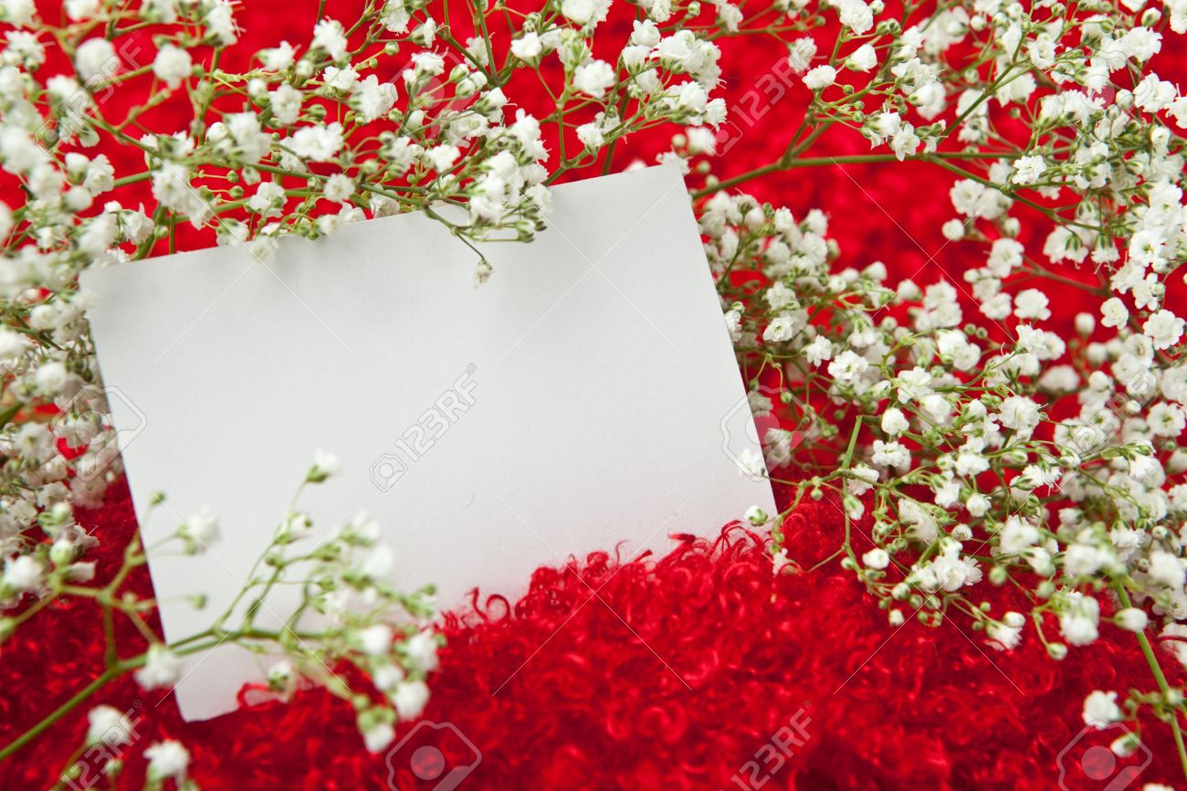 Blank Invitation Card In White Flowers On Shaggy Red Fabric Stock ...