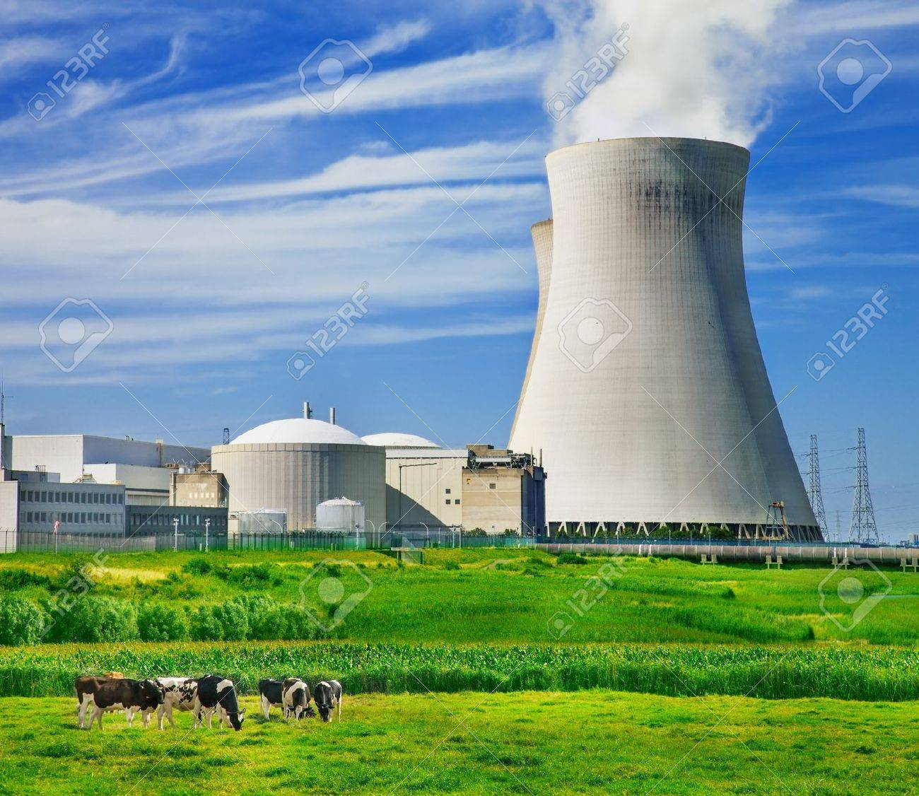 Cows grazing close to a nuclear power station - 21427796