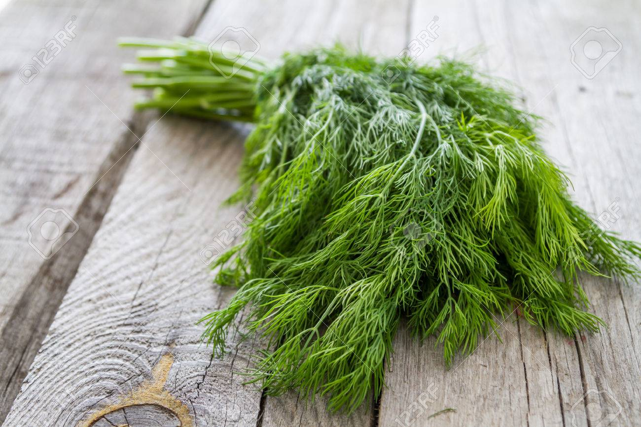 Dill bunch on rustic wood background, closeup Stock Photo - 48449027