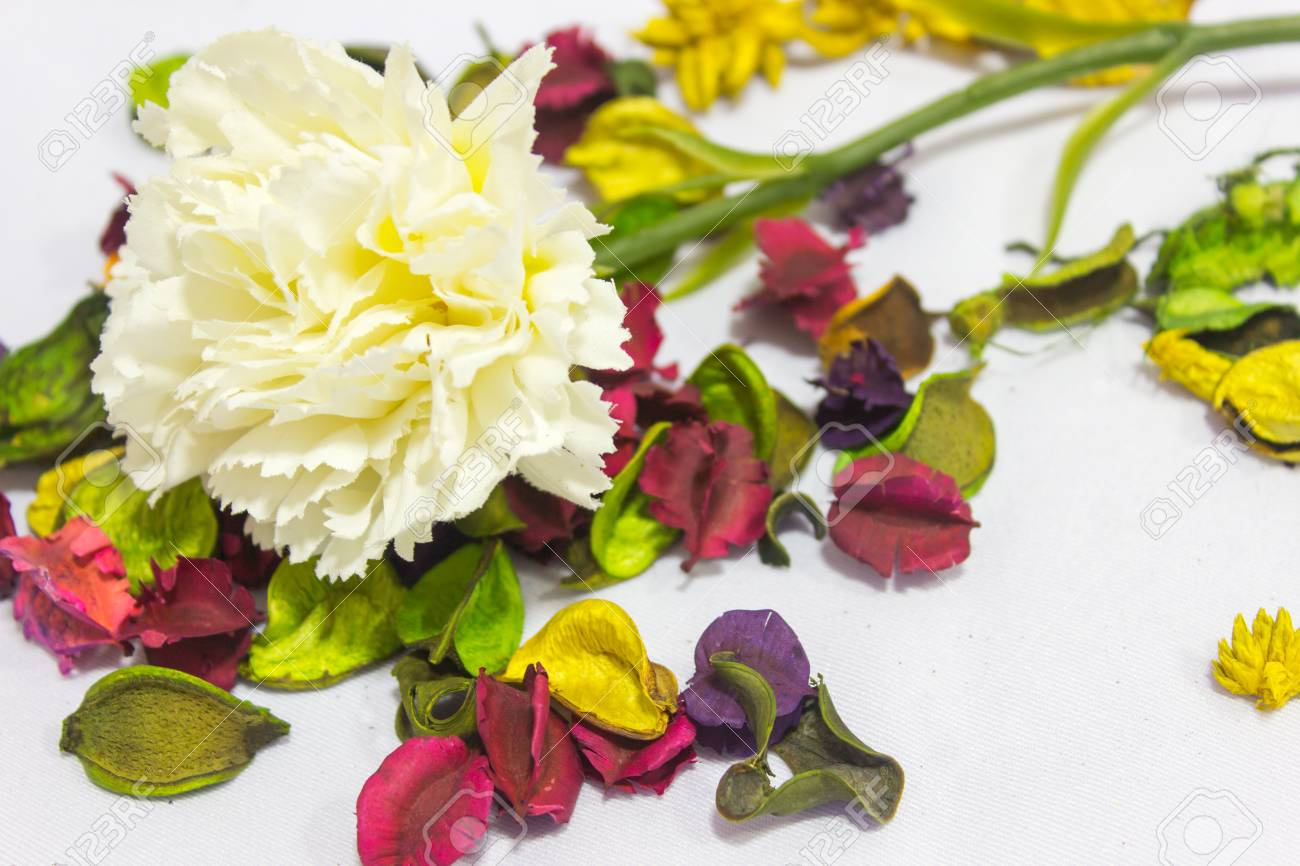 Fake Flowers On White Background Stock Photo Picture And Royalty