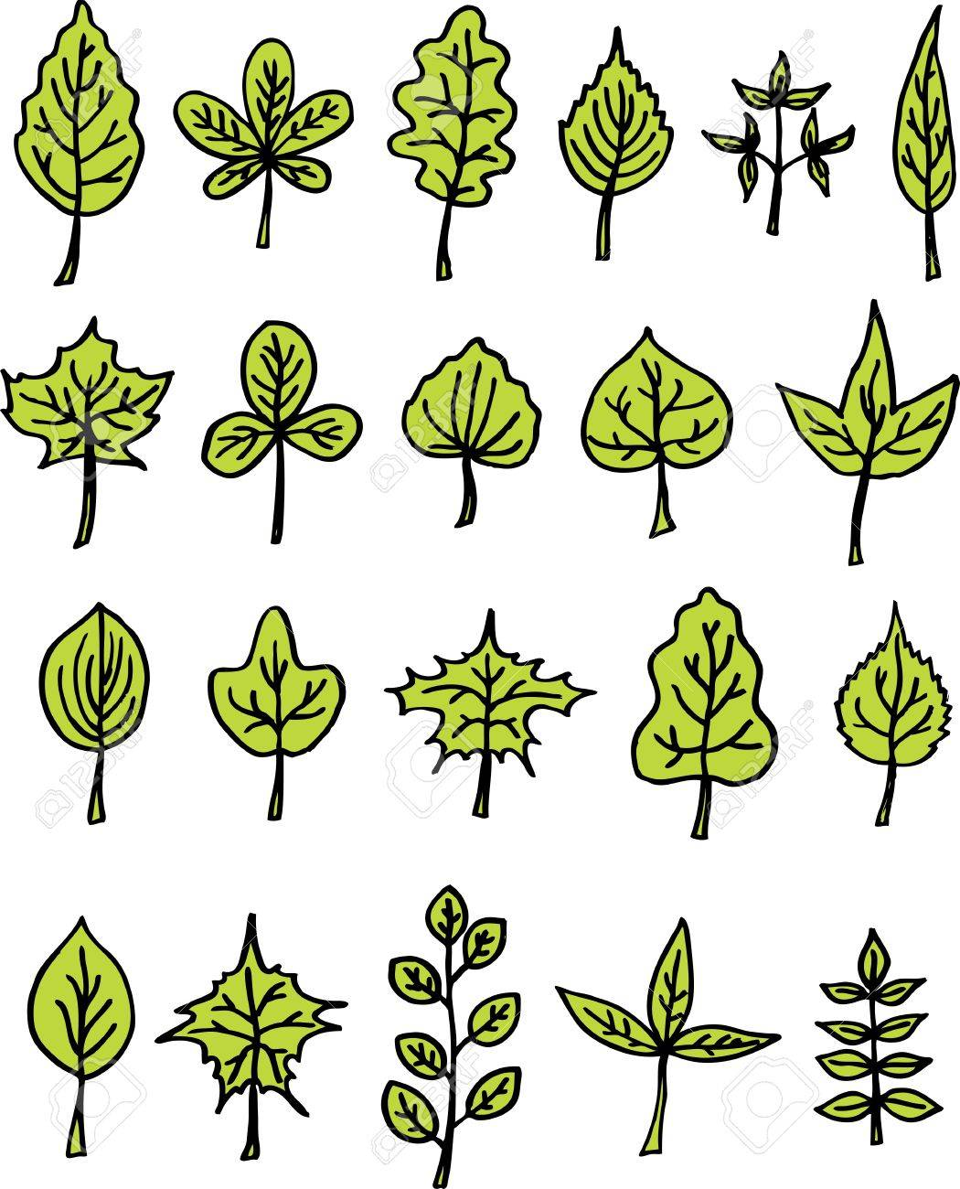 hand drawn trees leaves Stock Vector - 12834856