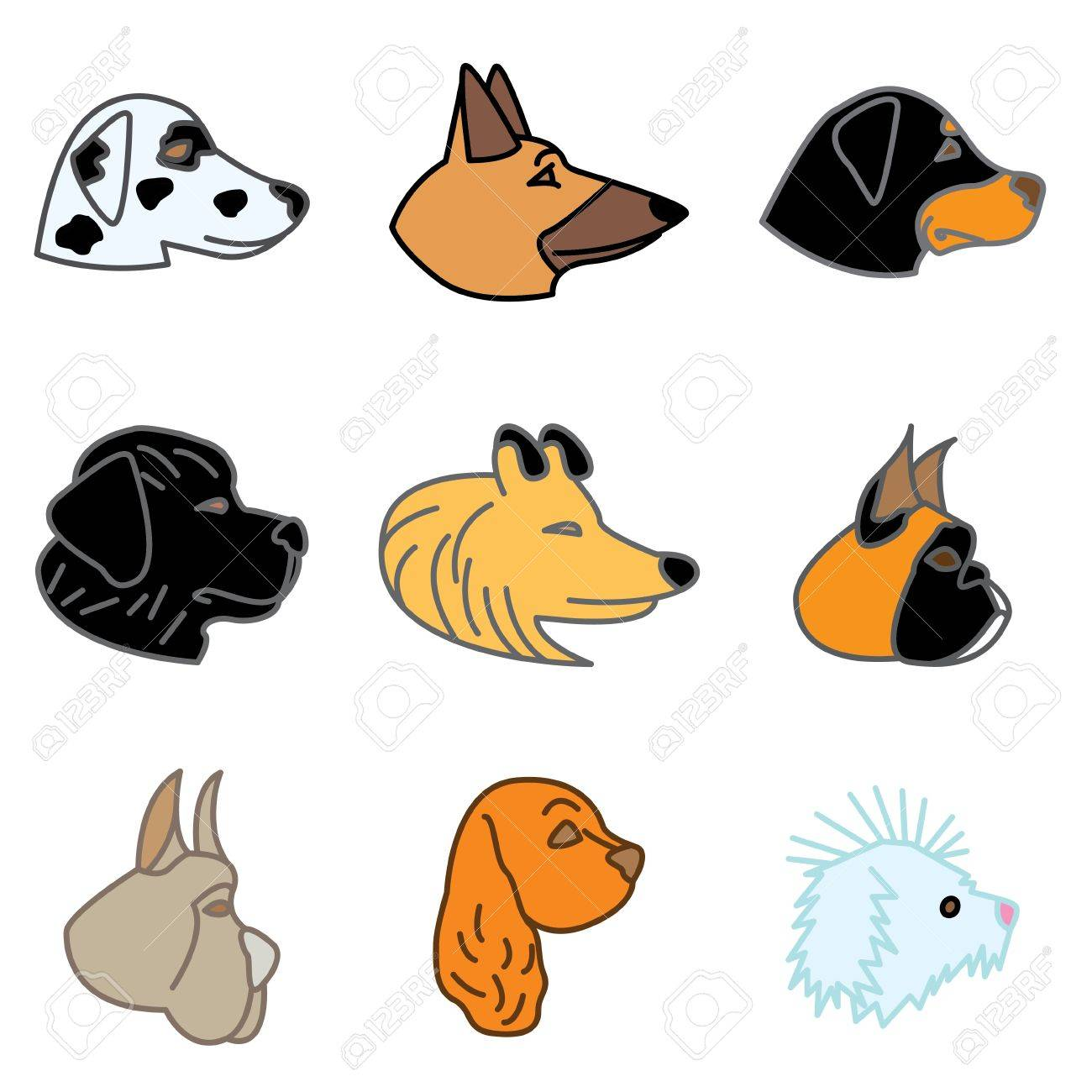 Cocker Spaniel: Breeds Of Dogs Hand Drawn Icons In Vector