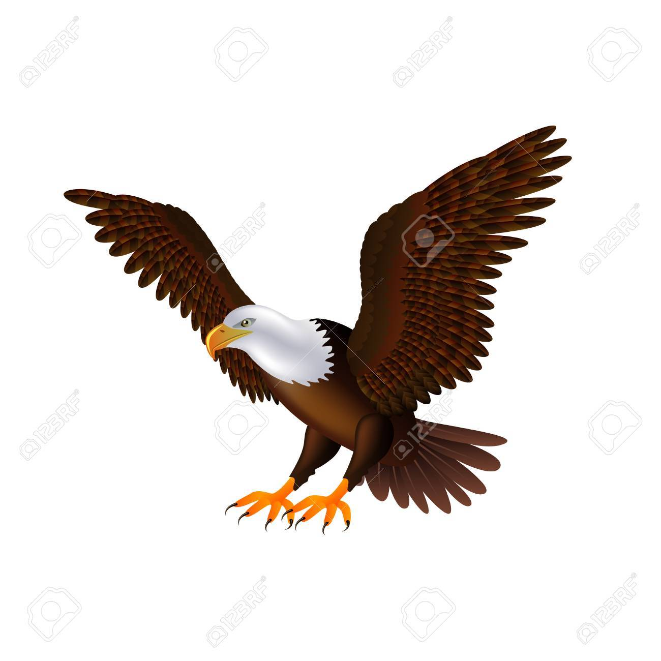 Flying eagle isolated on white photo realistic royalty free cliparts flying eagle isolated on white photo realistic stock vector 53126864 altavistaventures Image collections