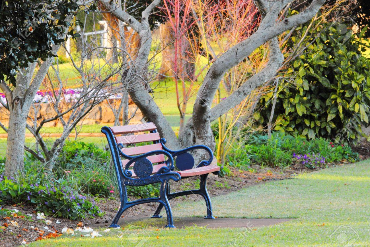 Perfect Park Bench In Laurel Bank Park Vison Imapred Scented Garden Toowoomba Stock  Photo   31568600