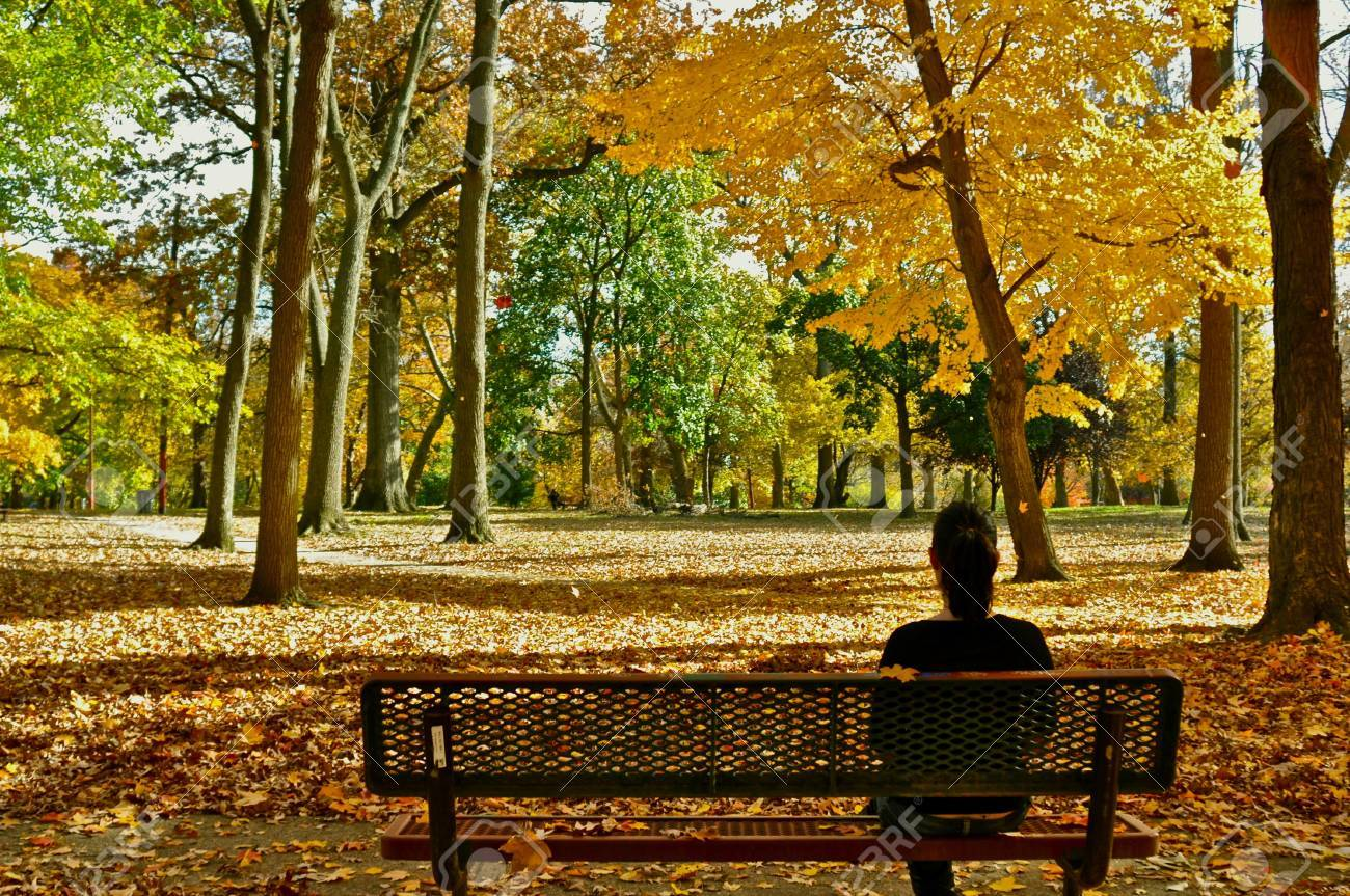 autumn soul Stock Photo - 10714198