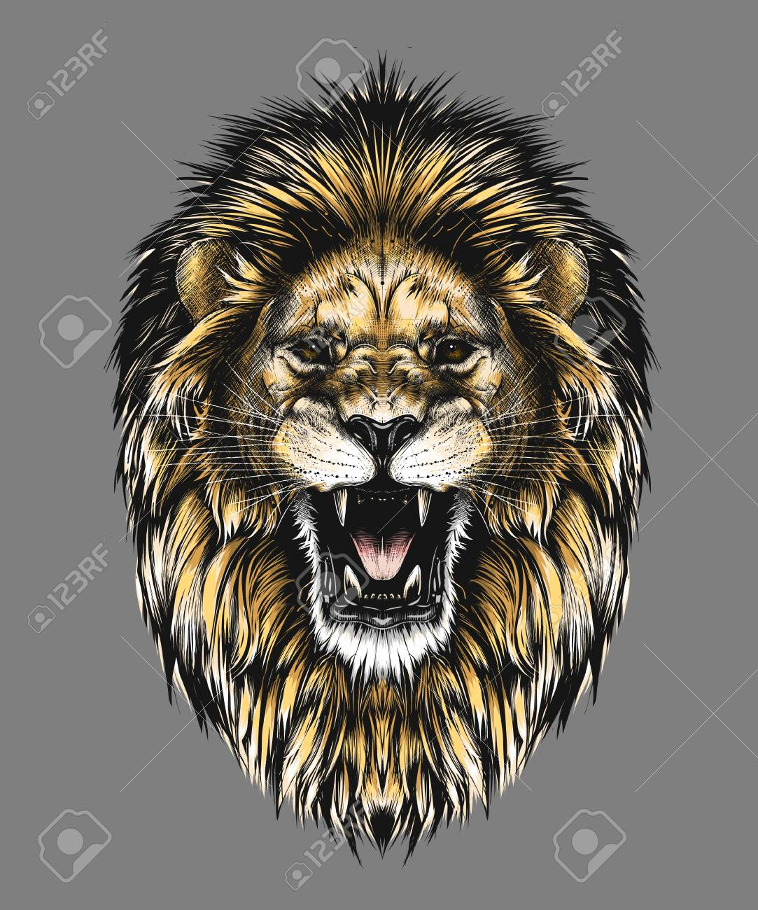 Hand drawn sketch of lion head in color isolated on gray background. Detailed vintage style drawing. Vector illustration for posters and print - 121873302