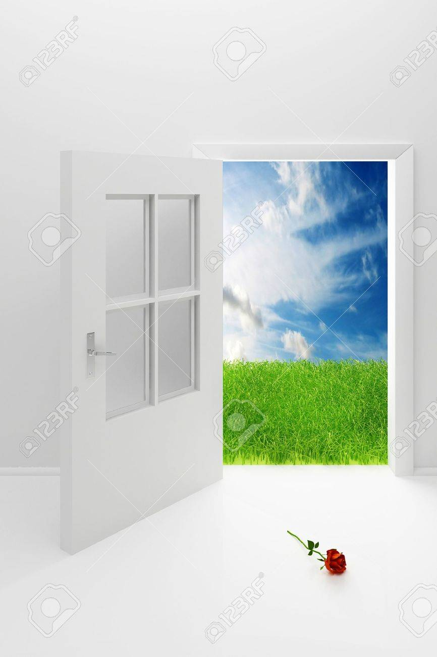 Open the white door, a green field, blue sky and a rose Stock Photo - 8679672