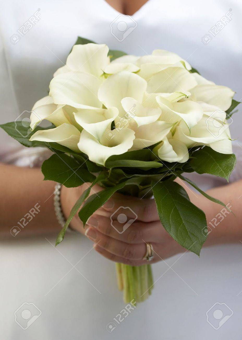 Hands of bride holding wedding bouquet of white calla lilies stock hands of bride holding wedding bouquet of white calla lilies stock photo 4015232 izmirmasajfo