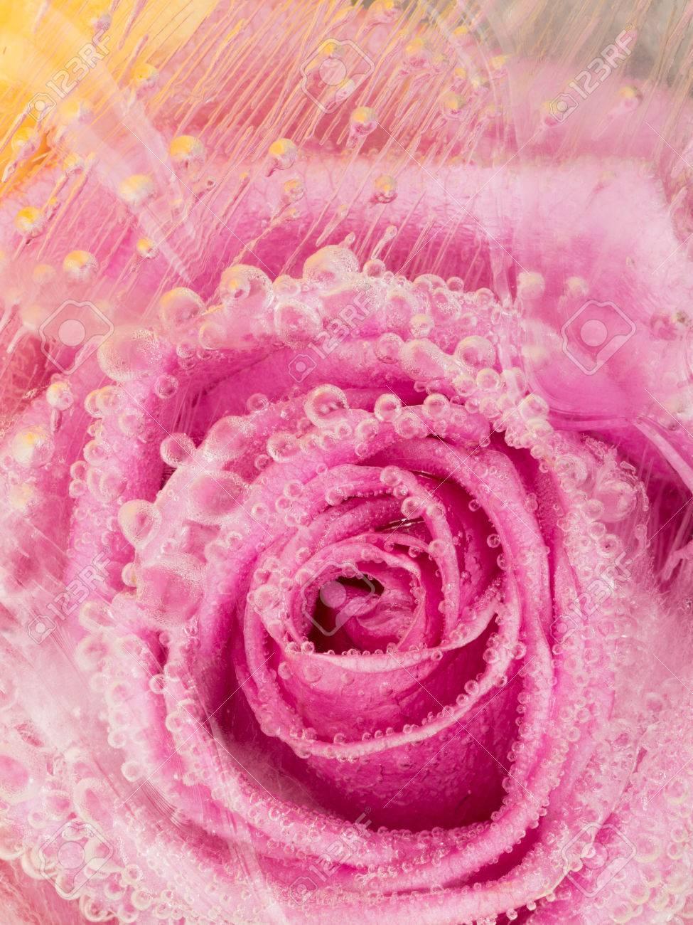 Hermosa Abstracción Verticales Suave Con Color De Rosa Púrpura Rosa ...