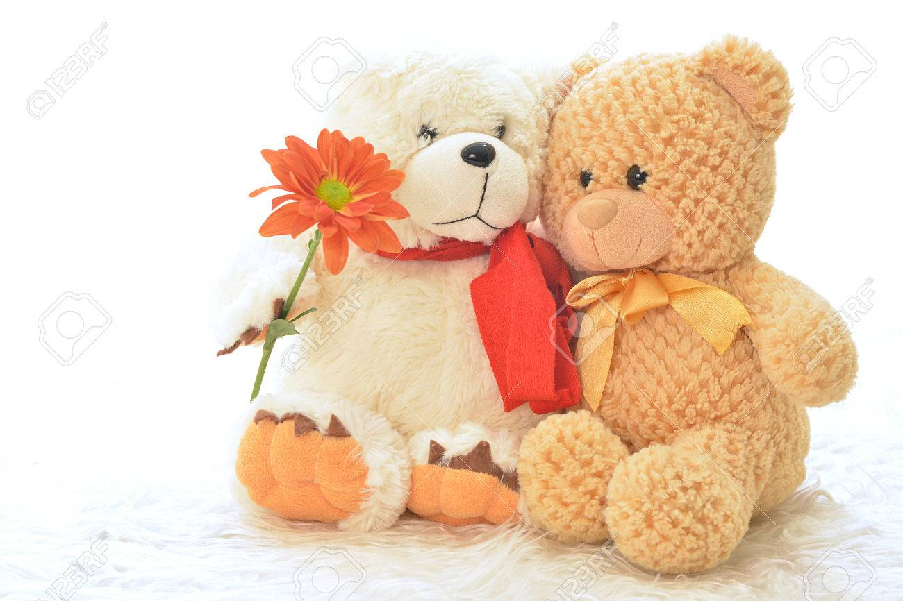 Two teddy bears with flower Stock Photo - 26018960