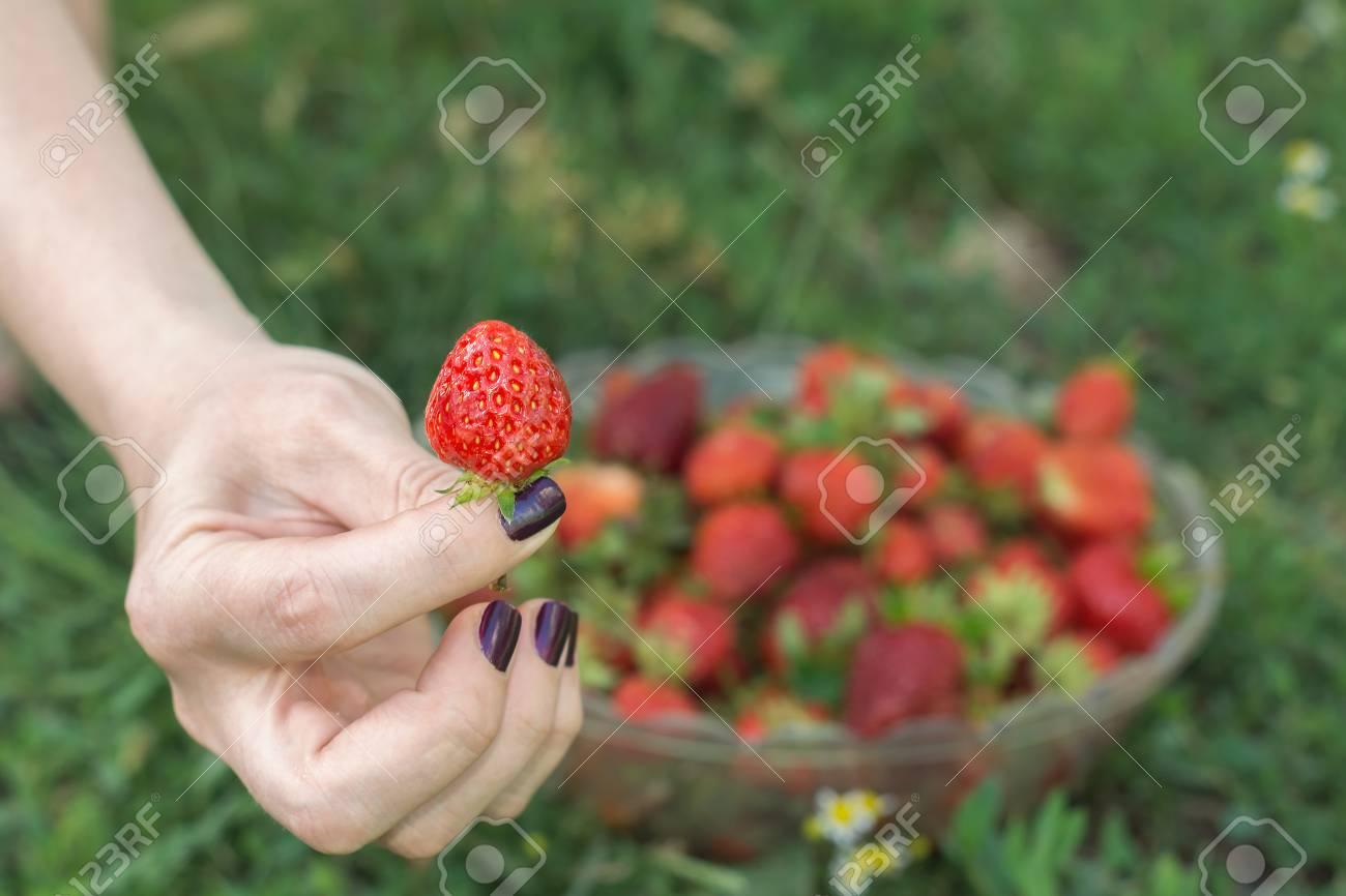 Halten Zwischen Zwei Fingern Erdbeeren Lizenzfreie Fotos, Bilder Und ...