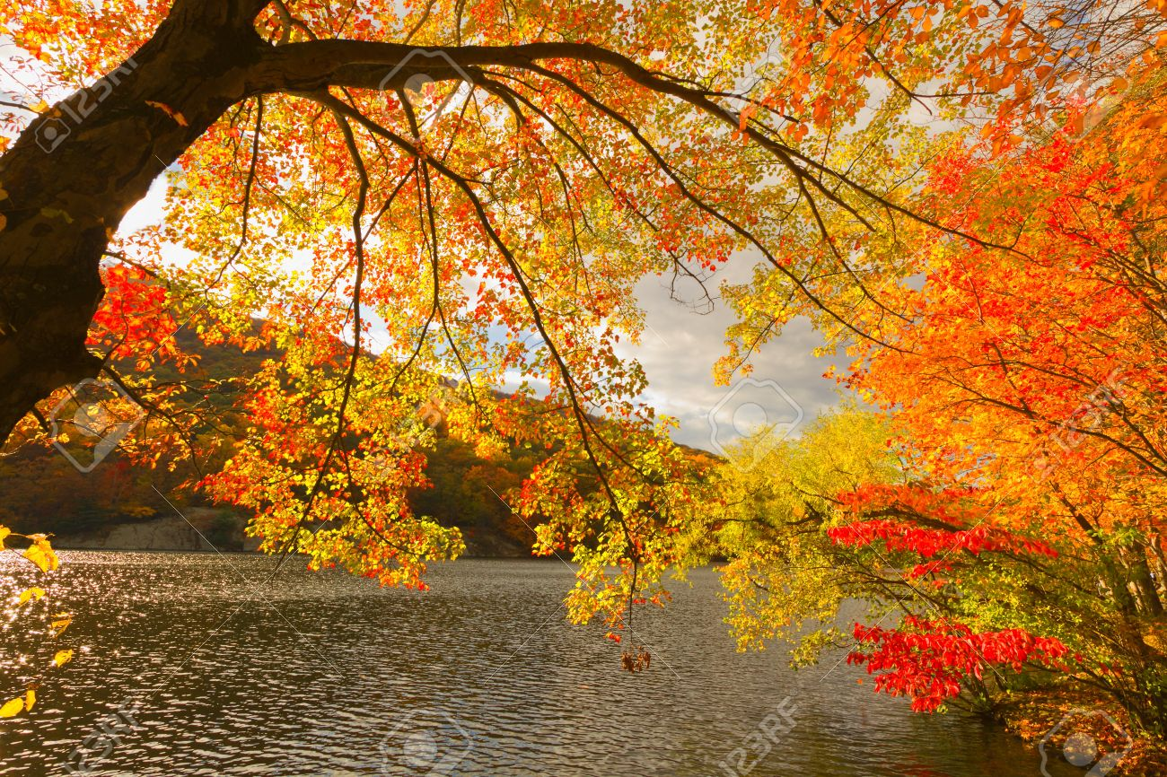 colorful fall scenery landscapes stock photo picture and royalty
