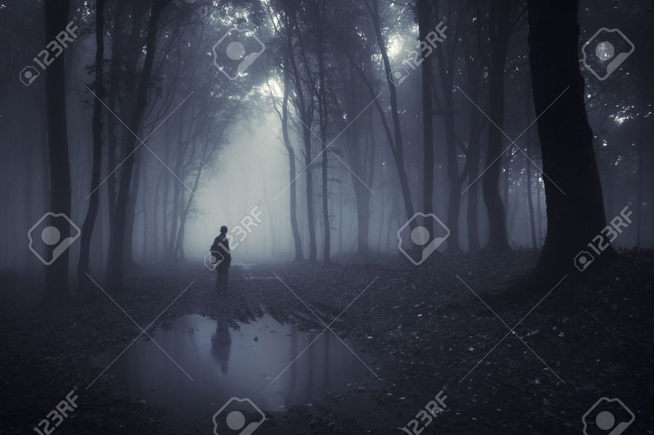 man in a forest with pond and fog after rain Stock Photo - 12957337