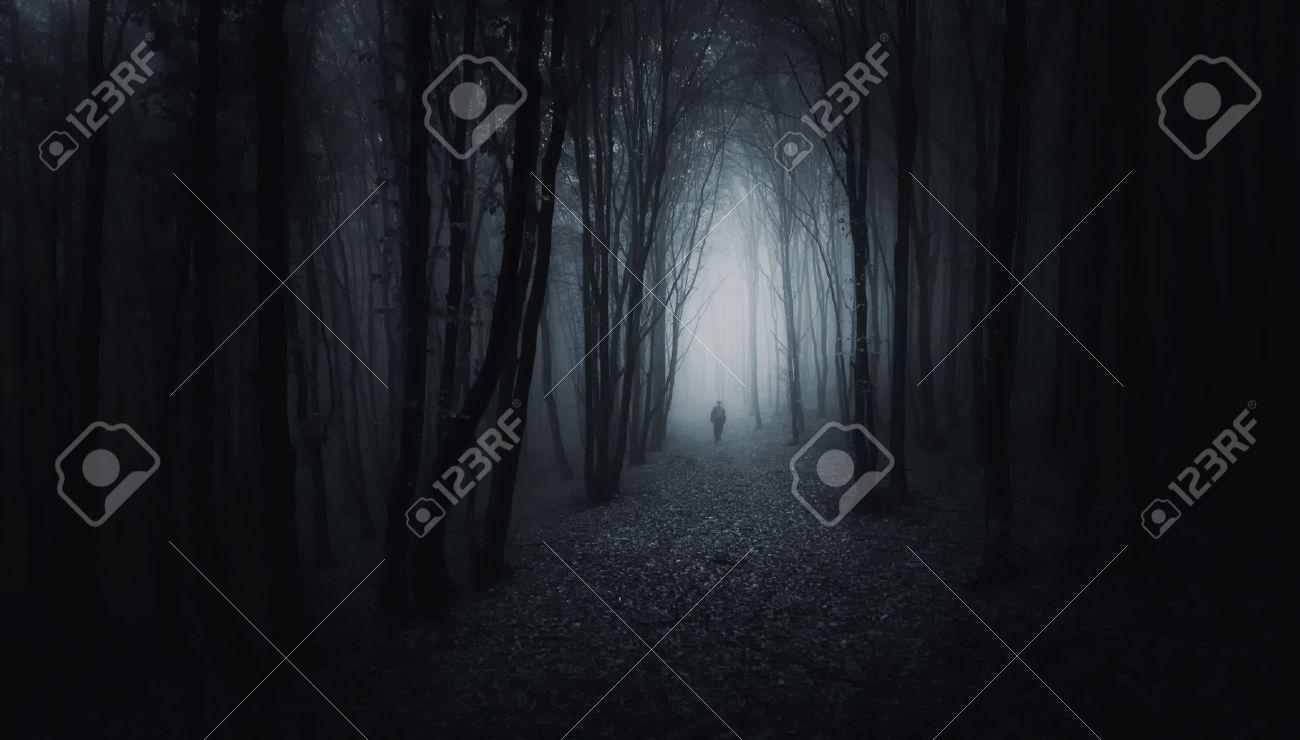 Man walking in a creepy dark forest with fog - 25970260