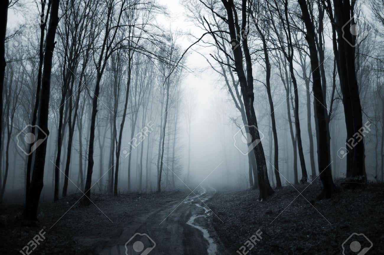 httpspreviews123rfcomimagesandreiuc88andreiuc881402andreiuc8814020003526455007-road-trough-a-dark-creepy-forest-with-fog-on-halloweenjpg