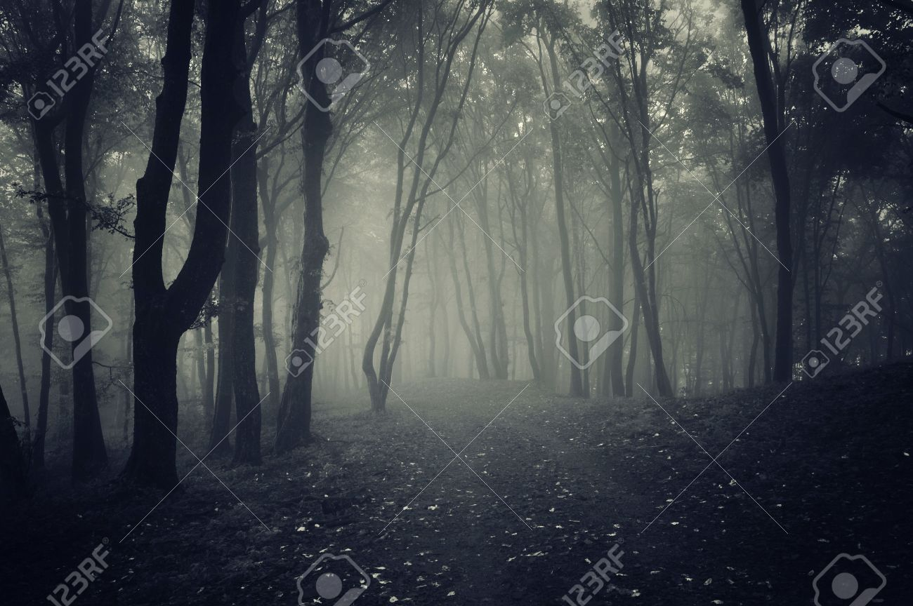 Halloween Spooky Pictures.Path In A Dark Spooky Forest With Fog On Halloween