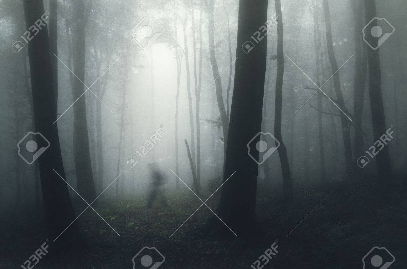 Ghost walking in dark mysterious haunted forest with fog - 40601397