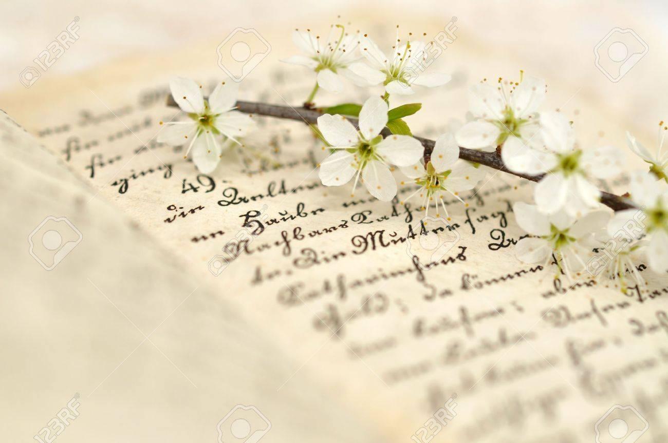 Cherry blossom on a diary Stock Photo - 9214903
